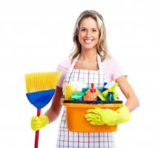 Cleaning Services Naperille IL